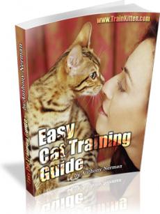 Ebook cover: Easy Cat Training
