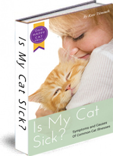 Ebook cover: The Cat Health Guide