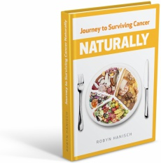 Ebook cover: Journey to Surviving Cancer Naturally