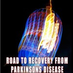Ebook cover: Road to Recovery from Parkinsons Disease