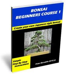 Ebook cover: Bonsai Beginners Course 1