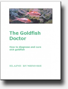 Ebook cover: The Goldfish Doctor