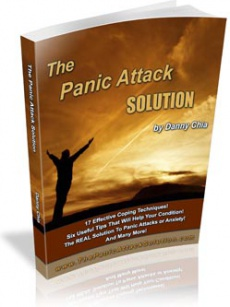 Ebook cover: The Panic Attack Solution