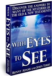 Ebook cover: With Eyes to See