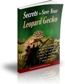 Ebook cover: Secrets to Save Your Leopard Gecko