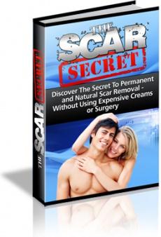 Ebook cover: The Scar Secret