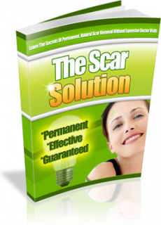 Ebook cover: The Scar Solution