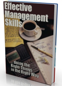Ebook cover: Effective Management Skills