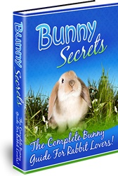 Ebook cover: Bunny Secrets