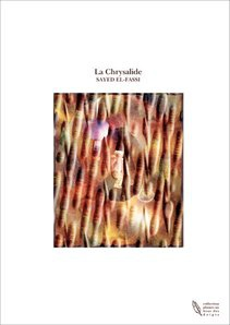 Ebook cover: La Chrysalide
