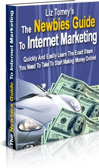Ebook cover: The Newbies Guide To Internet Marketing