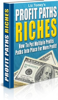 Ebook cover: Profit Paths Riches