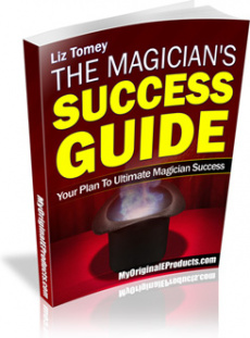 Ebook cover: The Magician's Succcess Guide
