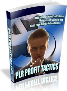 Ebook cover: Introducing PLR Profit Tactics
