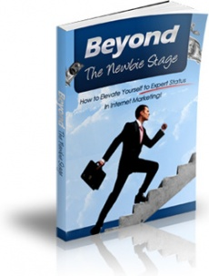 Ebook cover: Beyond The Newbie Stage Of Internet Marketing