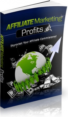 Ebook cover: Affiliate Marketing Profits