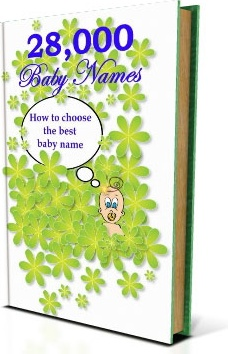 Ebook cover: 28000 Baby Names
