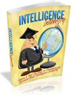 Ebook cover: Intelligence Intensity