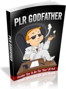 Ebook cover: PLR Godfather