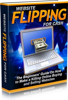 Ebook cover: Website Flipping For Cash