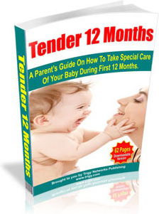 Ebook cover: Tender 12 Months