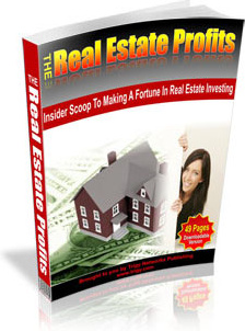 Ebook cover: The Real Estate Profit
