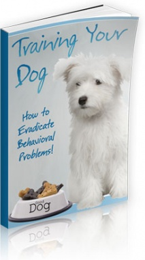Ebook cover: Training Your Dog