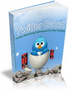 Ebook cover: Twitter Boom