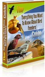 Ebook cover: Everything You Want To Know About Bird Feeders