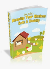 Ebook cover: Keeping Your Chickens Safe & Healthy
