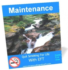 Ebook cover: Maintenance Guide