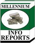 Ebook cover: Millennium Info Reports