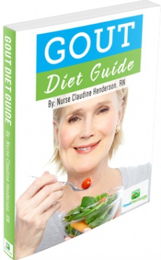 Ebook cover: The Gout Diet Guide