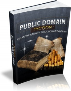 Ebook cover: Public Domain Tycoon: Cashing In On The Public Domain