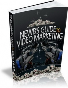 Ebook cover: The Newbies Guide To Video Marketing