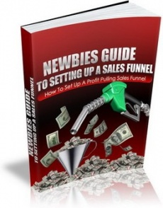 Ebook cover: A Newbies Guide to Setting Up A Sales Funnel
