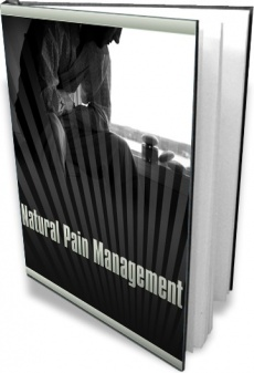 Ebook cover: Natural Pain Management 2