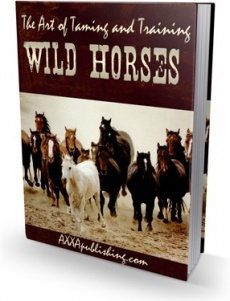 Ebook cover: The Art of Taming and Training Wild Horses!