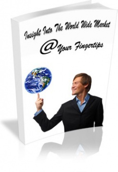 Ebook cover: Insight Into The World Wide Market @ Your Fingertips