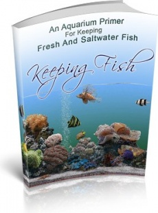 Ebook cover: Keeping Fish