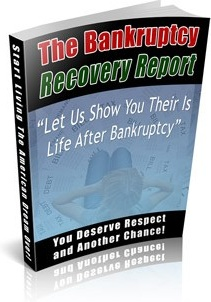 Ebook cover: The Bankruptcy Recovery Report