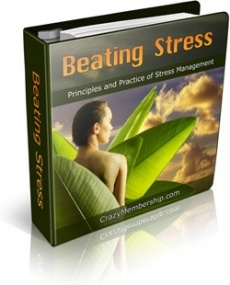 Ebook cover: Beating Stress!