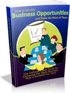 Ebook cover: How to Identify Business Opportunities and Make the Most of Them