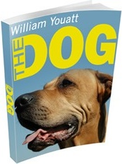 Ebook cover: The Dog
