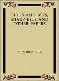 Ebook cover: Birds and Bees, Sharp Eyes and Other Papers