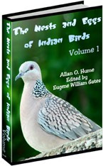 Ebook cover: The Nests and Eggs of Indian Birds
