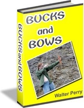 Ebook cover: Bucks And Bows