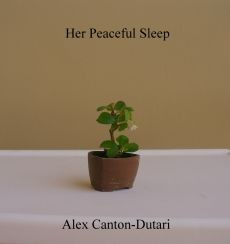 Ebook cover: Her Peaceful Sleep