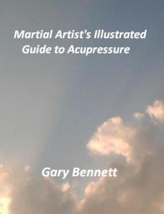 Ebook cover: Martial Artist's Illustrated Guide to Acupressure