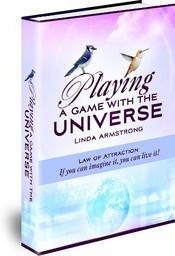 Ebook cover: Playing a Game with the Universe